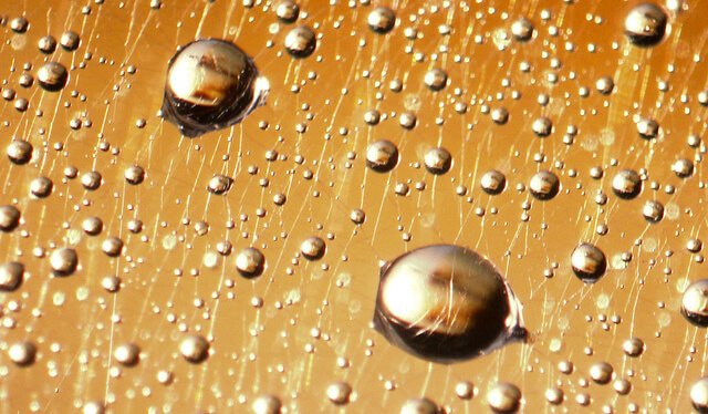 gold colored water drops