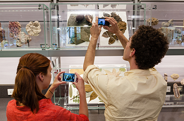 People taking pictures of display at Smithsonian Museum of Natural History with cell phones