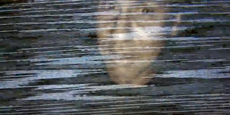 picture of alan netnar but image is distorted with static