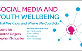 Youth Wellbeing report cover graphic