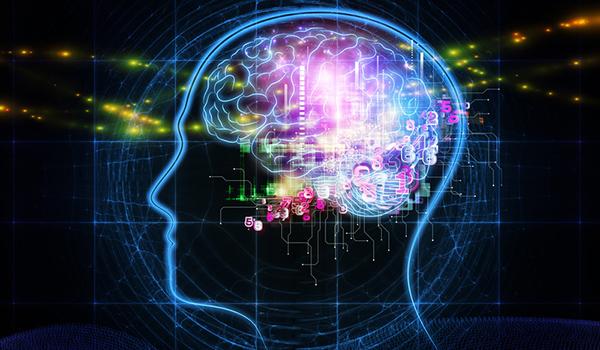 brain-600.jpg