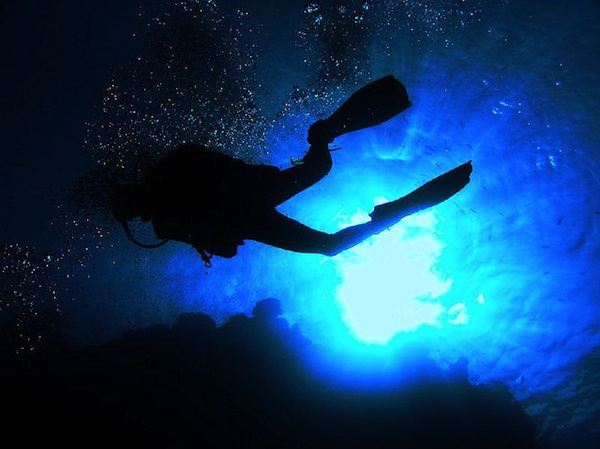 underwater photograph of scuba diver