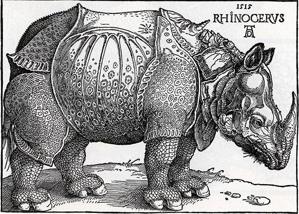 rhino-600.jpg